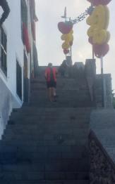 bart trappen